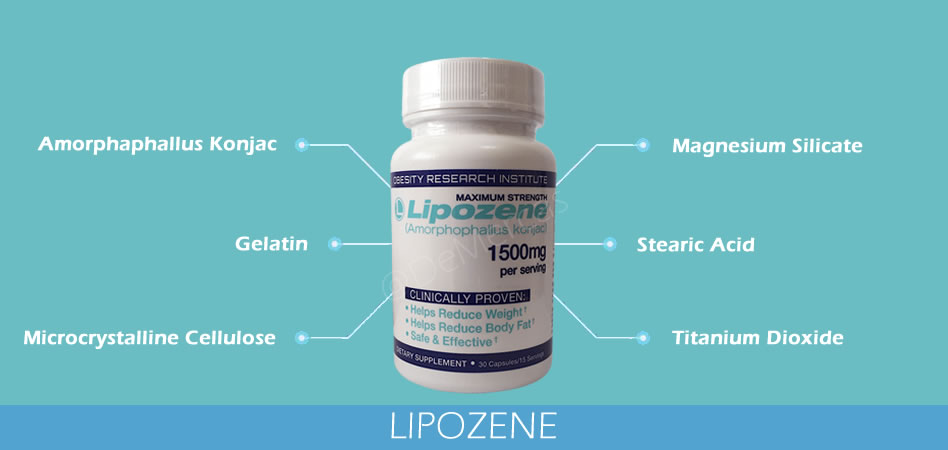 Lipozene Ingredientes