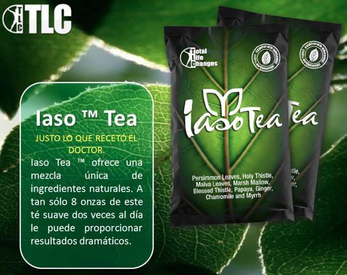 iaso tea ingredientes